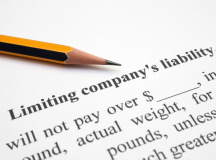 The new simplified limited liability company