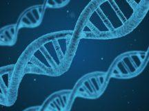 Perché investire nel Biomedicale? A Milano oltre un terzo del business nazionale